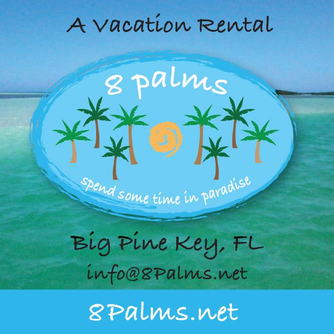 8 Palms