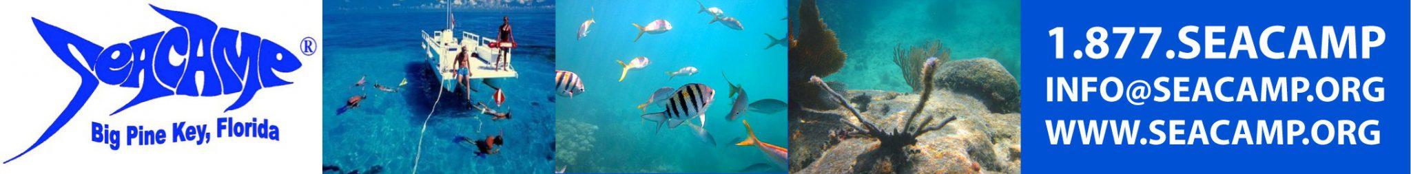 Seacamp